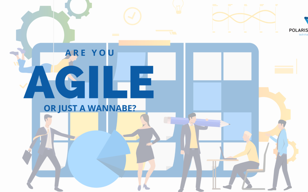 Are you AGILE or just a Wannabe?
