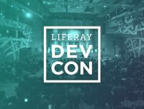 Amsterdam is famous for … the Liferay DevCon 2017!