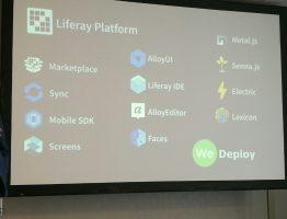 Polarising at LIFERAY Digital Solutions Forum 2017